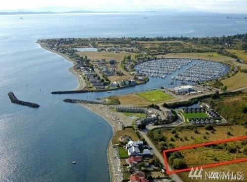 2 Edwards, Point Roberts, WA 98281 (#1479827) :: Ben Kinney Real Estate Team