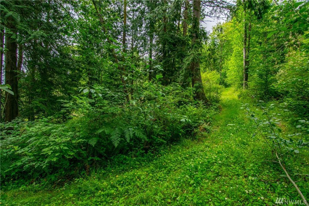 999 Maple Creek Lane - Photo 1