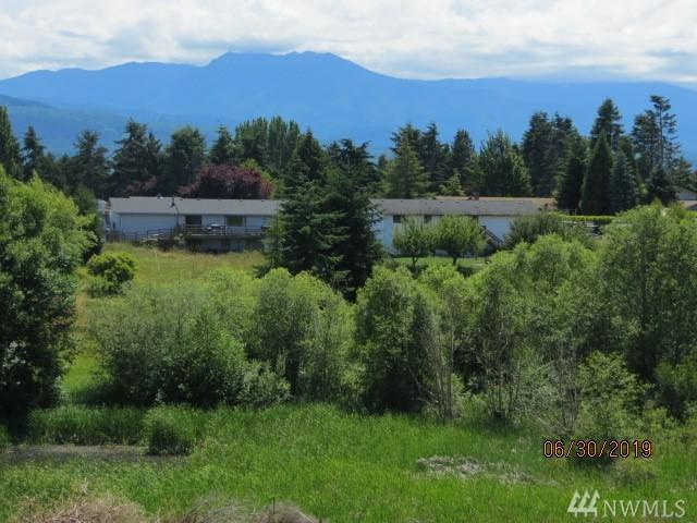 9999 Ridge View Dr, Sequim, WA 98382 (#1483613) :: Alchemy Real Estate