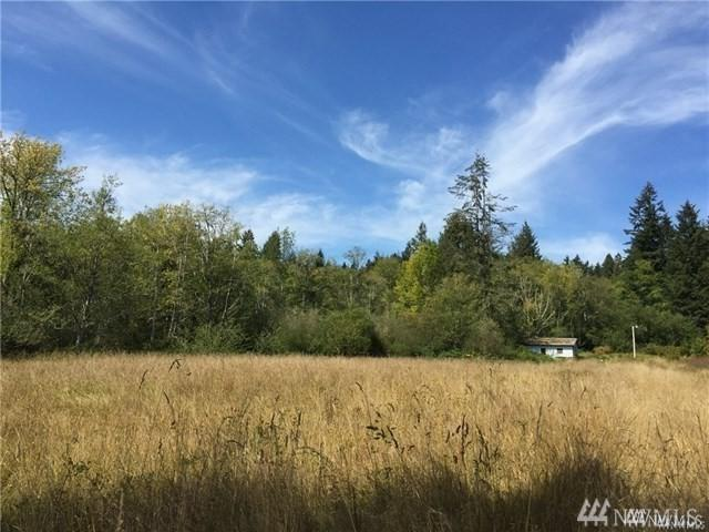 13009 Sandberg Rd, Anderson Island, WA 98303 (MLS #1484371) :: Matin Real Estate Group