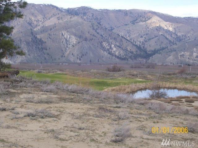 504 Desert Canyon Blvd, Orondo, WA 98843 (#1484481) :: Platinum Real Estate Partners