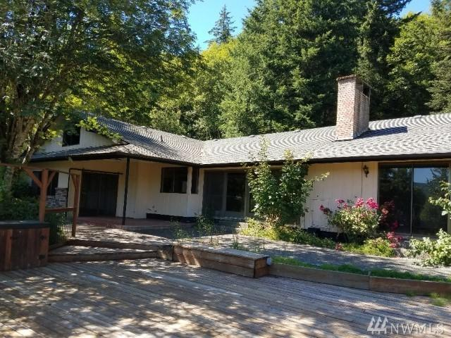 163 Wills Rd, Glenoma, WA 98336 (#1484966) :: Platinum Real Estate Partners