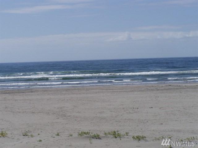 111 280, Ocean Park, WA 98640 (#1485036) :: Ben Kinney Real Estate Team