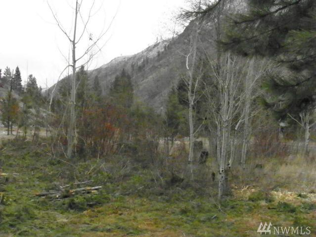 24 Parcel D Entiat River Rd, Entiat, WA 98822 (#1487372) :: Real Estate Solutions Group
