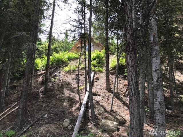 85 Blewett Ridge Dr, Peshastin, WA 98847 (#1487524) :: Ben Kinney Real Estate Team
