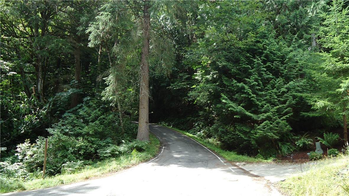 4 Deer Run Lane - Photo 1