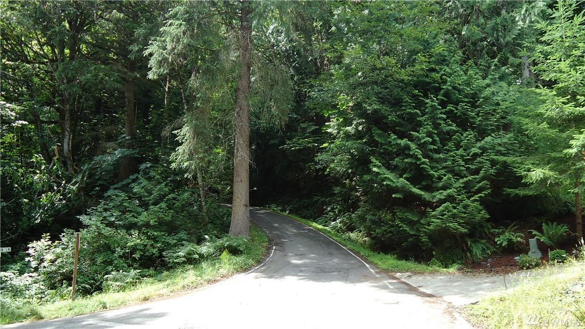4 Deer Run Lane - Photo 1