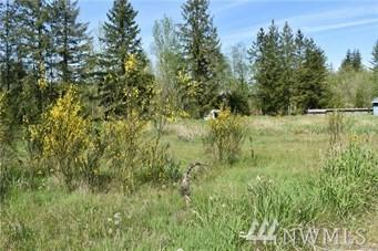 325 Hansen Rd, Toutle, WA 98649 (#1489696) :: Platinum Real Estate Partners