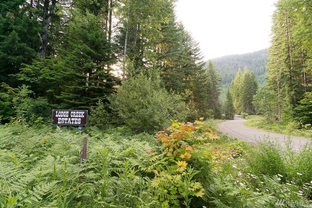 1 Lodge Creek Land - Photo 1