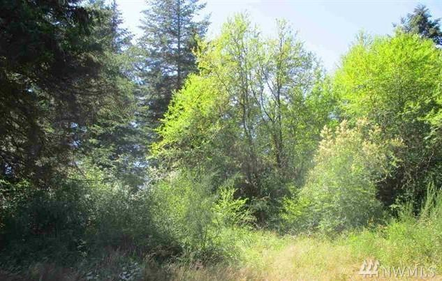 9999 Lower Elwha Rd - Photo 1