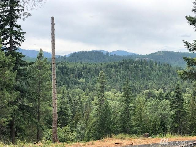 18 Kokanee Lp, Cle Elum, WA 98922 (#1493090) :: Platinum Real Estate Partners