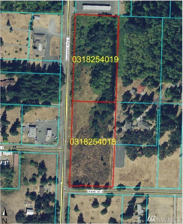 26527 Mountain Hwy, Spanaway, WA 98387 (#1494098) :: McAuley Homes