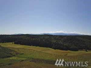 2132 Beaver Valley Rd, Chimacum, WA 98325 (#1494143) :: Keller Williams Western Realty