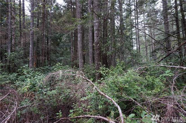 243 E Mcmicken Rd, Shelton, WA 98584 (#1497045) :: KW North Seattle