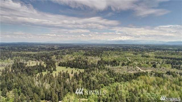 37508 46th Avenue S, Roy, WA 98580 (#1497392) :: Mike & Sandi Nelson Real Estate