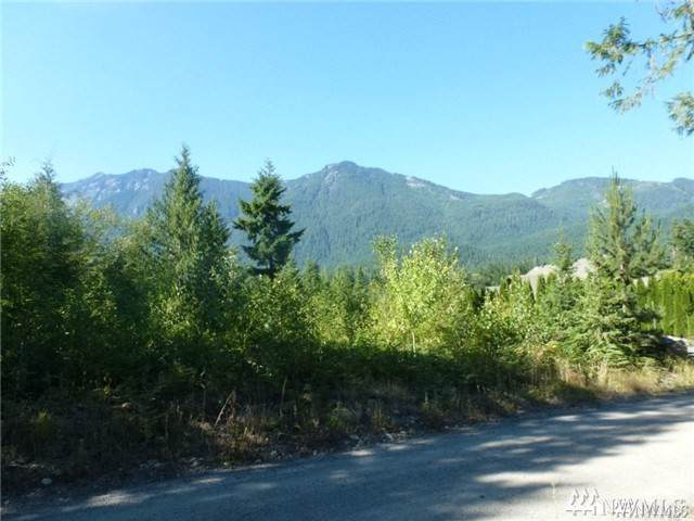 23-LOT NE Money Creek Rd, Skykomish, WA 98288 (#1505833) :: Mosaic Home Group