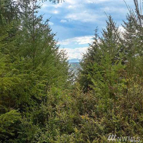 6-B NE Aquila Ridge Rd, Tahuya, WA 98588 (#1506672) :: Better Homes and Gardens Real Estate McKenzie Group