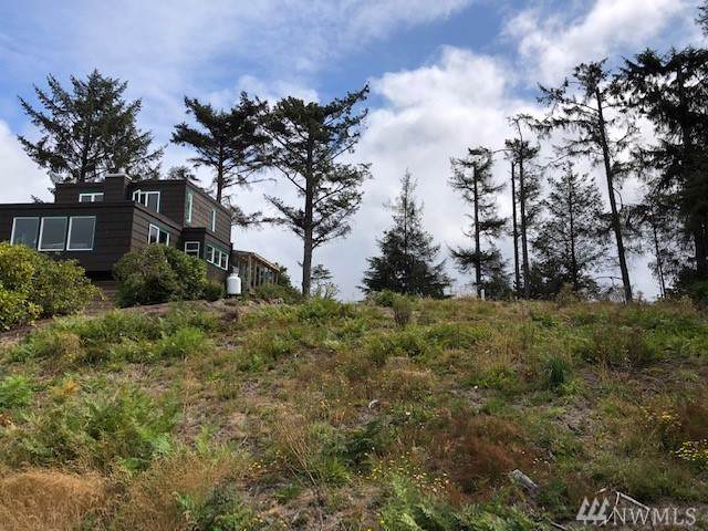 31302 J Place, Ocean Park, WA 98640 (#1507286) :: NW Home Experts