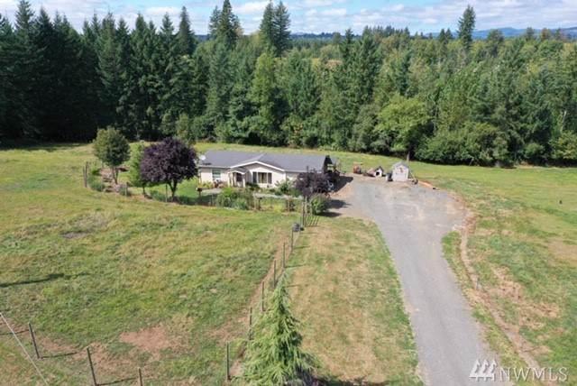 754--10 Cinebar Rd, Cinebar, WA 98533 (#1507429) :: Ben Kinney Real Estate Team