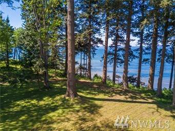297 Marine Dr, Point Roberts, WA 98281 (#1510544) :: Ben Kinney Real Estate Team