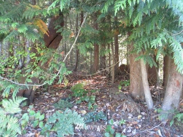 123 Swaney, Port Hadlock, WA 98339 (#1513440) :: Mike & Sandi Nelson Real Estate
