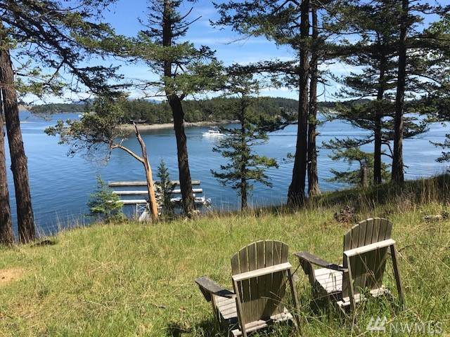 3-Lot 6 Nelson Trail, Henry Island, WA 98250 (#1514380) :: Lucas Pinto Real Estate Group