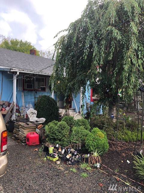606 Morse St, Ryderwood, WA 98581 (#1522304) :: Ben Kinney Real Estate Team