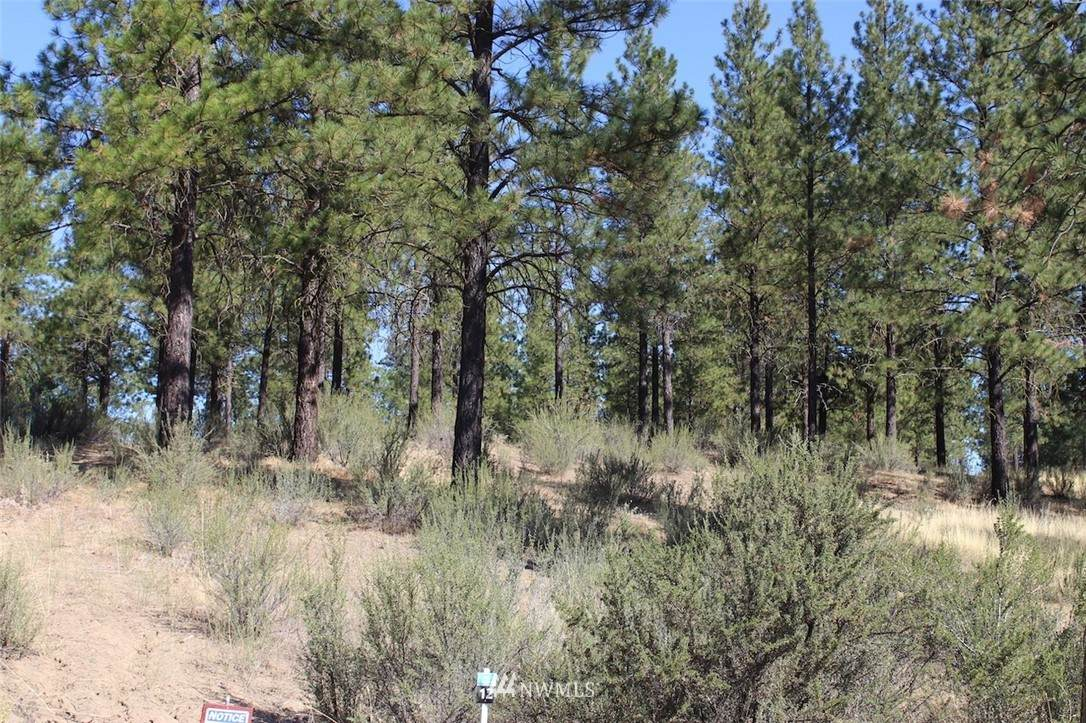 25675 Pine Cone Court - Photo 1