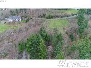 669 Sommerset Rd, Woodland, WA 98674 (#1533209) :: Mosaic Home Group