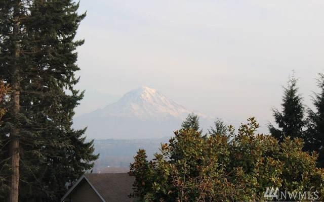 5206 Monta Vista Dr E, Edgewood, WA 98372 (#1533673) :: Ben Kinney Real Estate Team