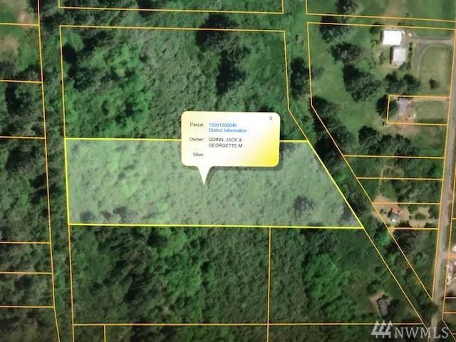 3677 Larkin Road, North Cove, WA 98547 (#1533706) :: Northwest Home Team Realty, LLC