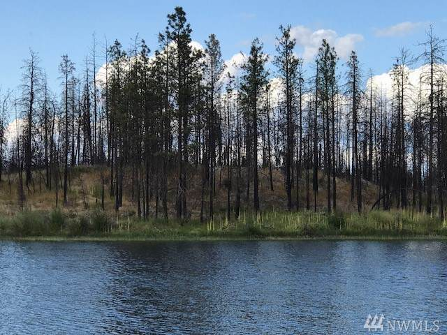 0 Emerald Lake Road, Okanogan, WA 98840 (MLS #1534277) :: Nick McLean Real Estate Group