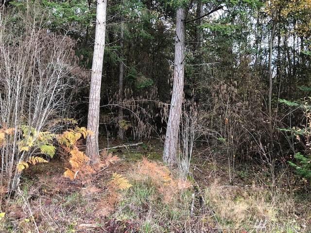 0-N Camano Ridge, Camano Island, WA 98282 (#1539046) :: Ben Kinney Real Estate Team