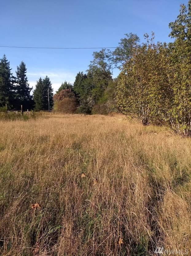 18020 Gilbert Ave SE, Tenino, WA 98589 (#1539942) :: KW North Seattle