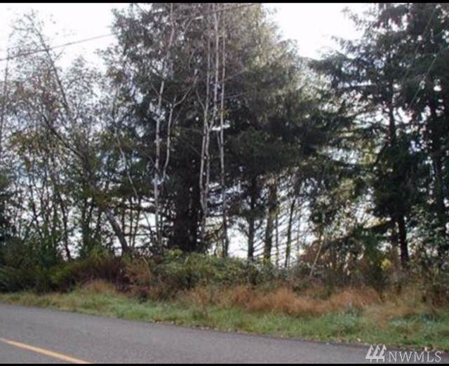 0-X Raymond-South Bend Rd, Raymond, WA 98577 (#1540165) :: Record Real Estate