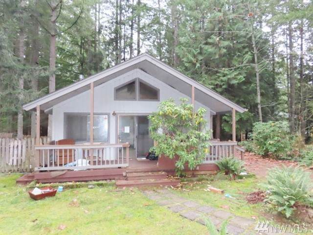 21 N Hamma Hamma Ct W, Hoodsport, WA 98548 (#1541456) :: Mosaic Home Group