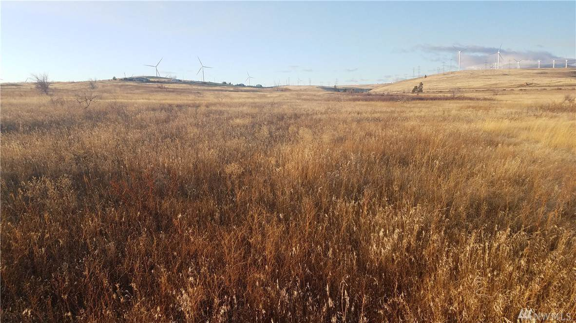 5 Lot 5A-2 Ellensburg Ranches - Photo 1