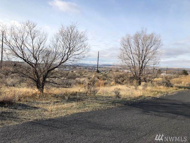 0 Woodland Ave NE, Soap Lake, WA 98851 (MLS #1544567) :: Nick McLean Real Estate Group