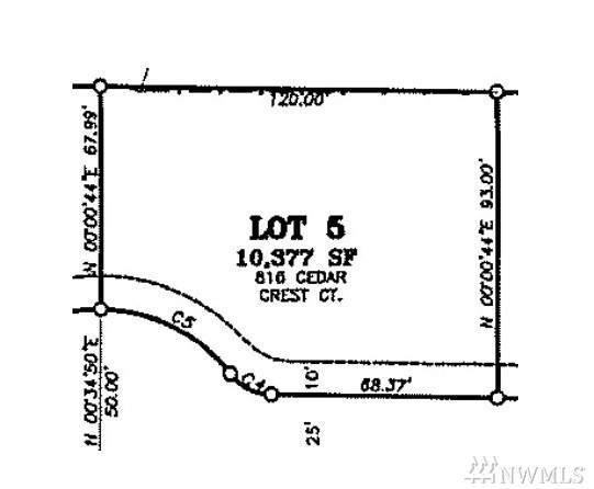 816 Cedar Crest Ct, Everson, WA 98247 (#1545654) :: Hauer Home Team