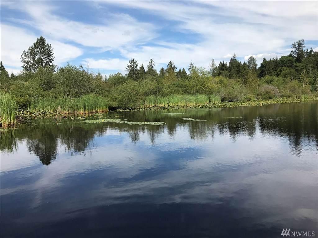17307 Lake Desire Dr - Photo 1