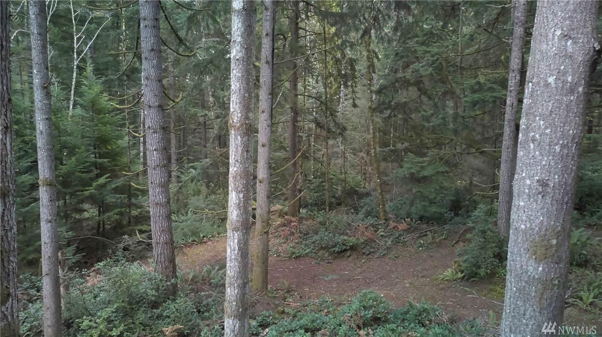 999 Ehlert Woods Place - Photo 1