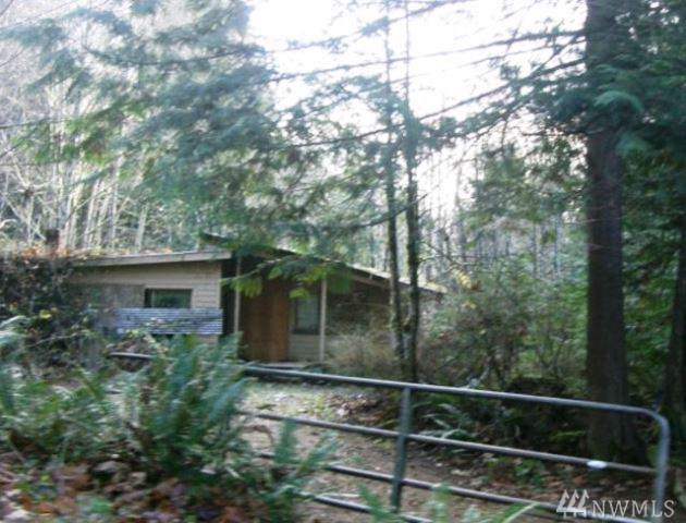 41 Palamino Lane, Brinnon, WA 98320 (#1547714) :: Pickett Street Properties