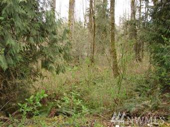 38111 Enumclaw Franklin Rd - Photo 1