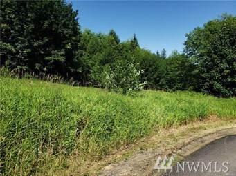 122 Elk Ridge Rd, Mossyrock, WA 98564 (#1549339) :: Northwest Home Team Realty, LLC