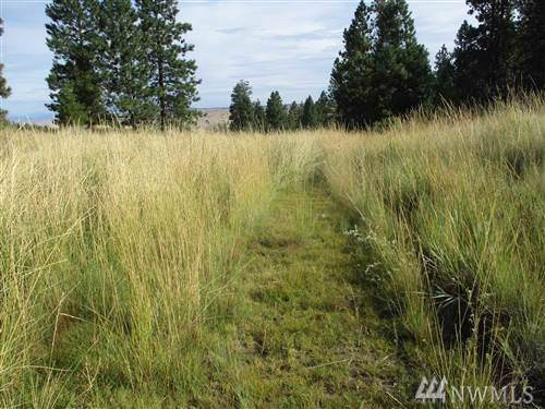 99 Undeveloped, Mansfield, WA 98830 (#1549797) :: Real Estate Solutions Group