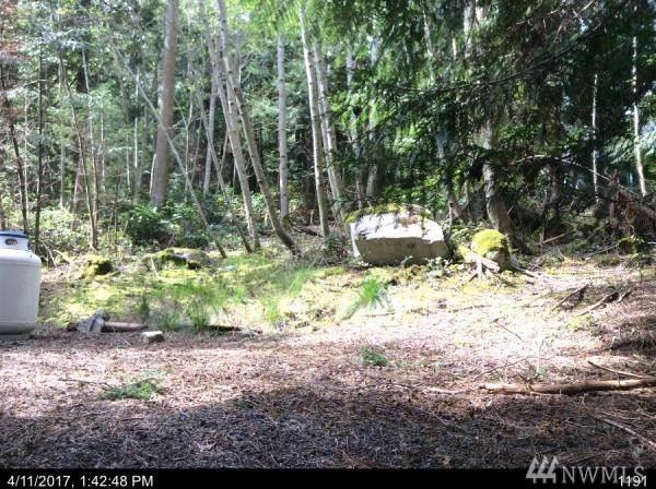 66 Lodgepole Lane, Lopez Island, WA 98261 (#1554915) :: Ben Kinney Real Estate Team