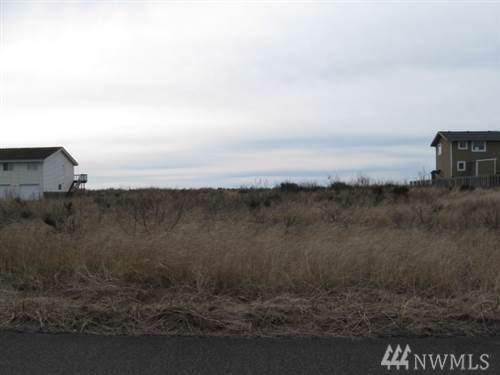 1450 Storm King Ave, Ocean Shores, WA 98569 (#1555742) :: Real Estate Solutions Group