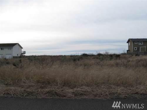 1450 Storm King Ave, Ocean Shores, WA 98569 (#1555742) :: Crutcher Dennis - My Puget Sound Homes
