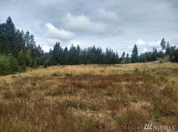 2 Northern Sky Dr, Shelton, WA 98584 (#1557643) :: Better Homes and Gardens Real Estate McKenzie Group