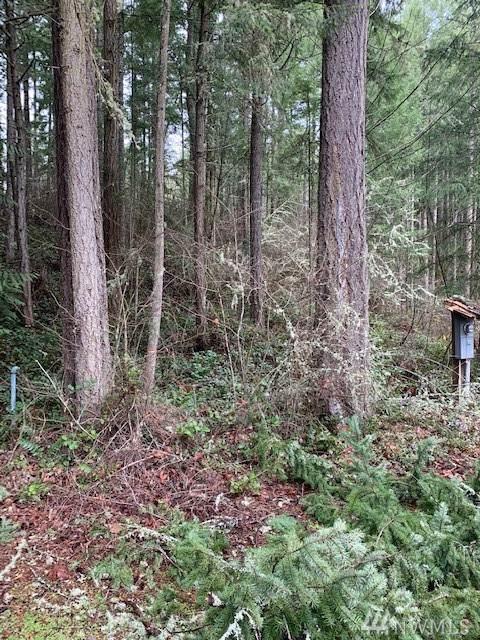 17814 Pondside Ct SE, Yelm, WA 98597 (#1558580) :: Northwest Home Team Realty, LLC